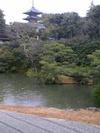 Photo1249